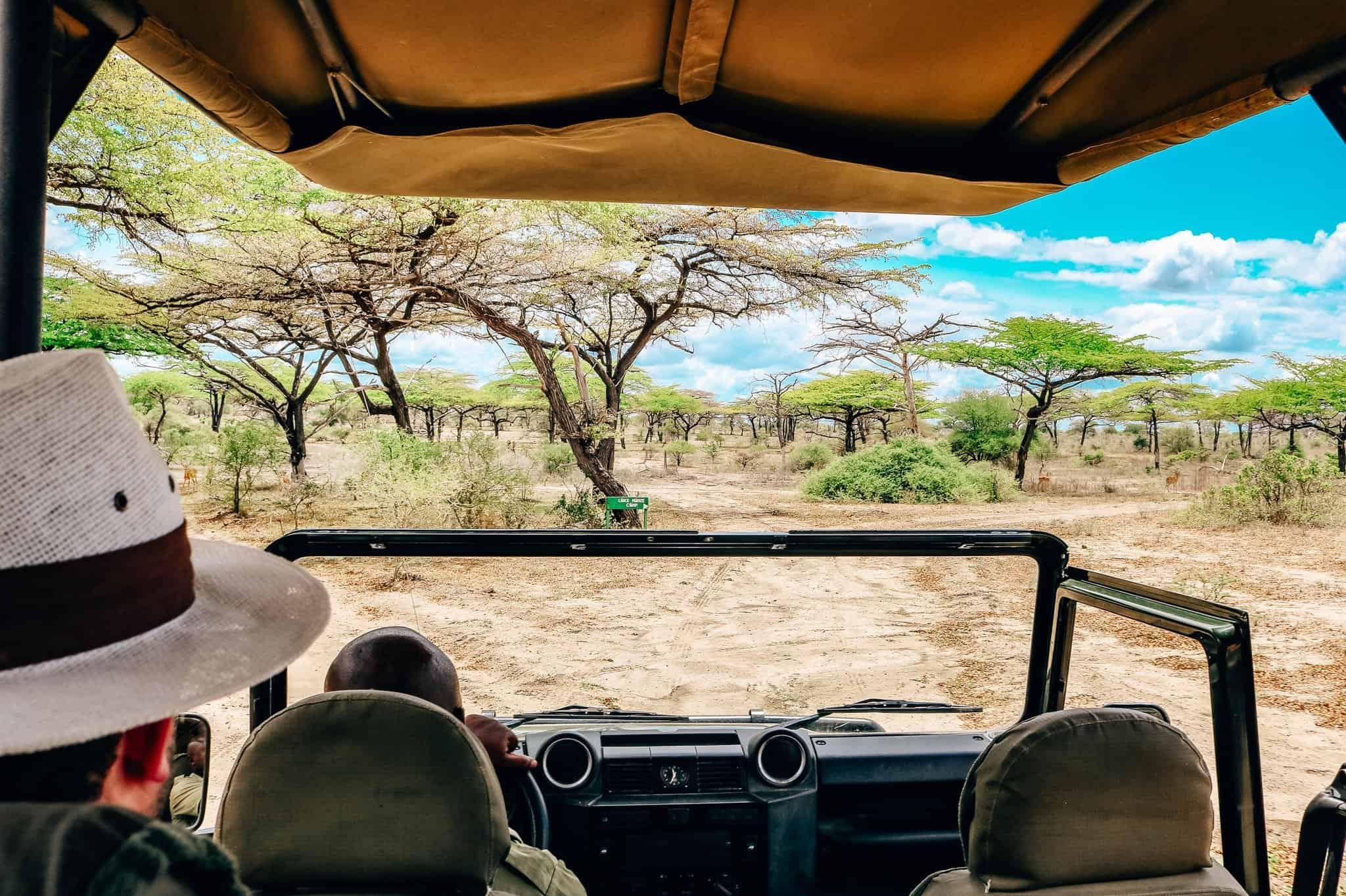 View from the Safari Car - African Safari Drive in the Selous Game Reserve