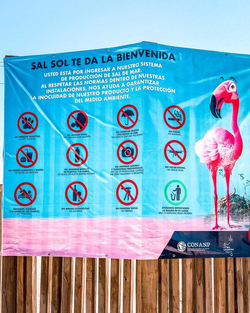 Rules for Las Coloradas Yucatan